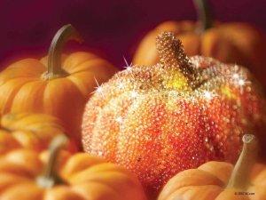 Pumpkin Latte Diva Dessert Dip